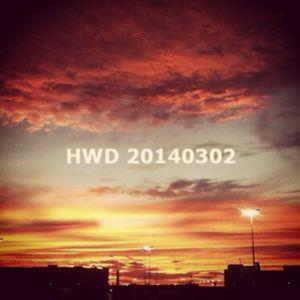 HWD20140302