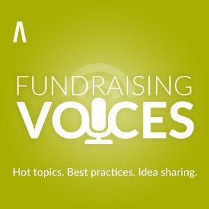 RNL Fundraising Voices - Matt Herzberger - Digital Natives