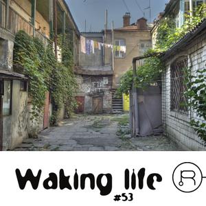 Waking Life 53 (12.11)