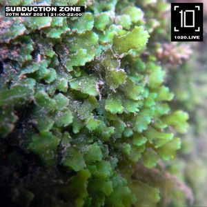 Subduction Zone - 20th May 2021