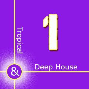 Tropical & Deep House 1  ○●  Gianluca Conforti  ●○