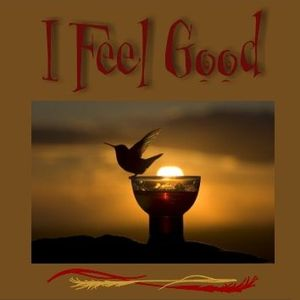 I Feel Good by MmeFLY on BeatConscious | Mixcloud
