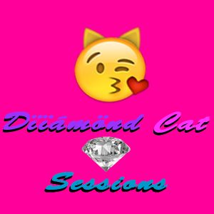 Diiamond Cat Sessions 3