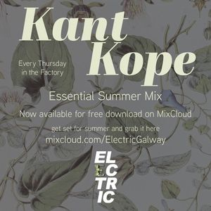 Electric Essential Summer Mix