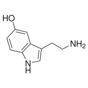 Serotonina FM - 20100504 inSession