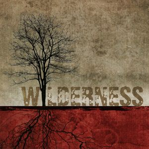 Meeting God In The Wilderness