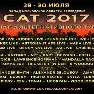 S.A.T Festival-2017 MiX