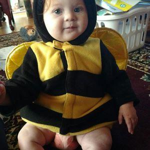 Bee Gothic