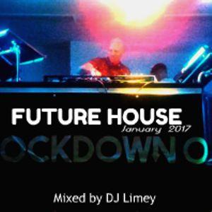 Future House Mix (January 2017)