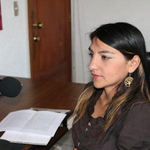 ENTREVISTA A LA ARQUITECTA GABRIELA ASTUDILLO, SOBRE TEMAS PATRIMONIALES.