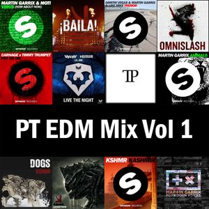 PT EDM Mix Vol 1