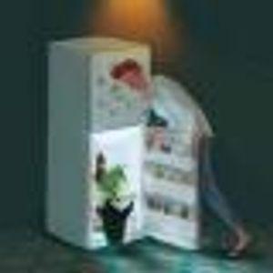 冰箱里的企鹅    文/陈谌