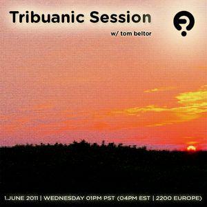 Tribuanic Session 54 - June 2011 - TomBeltor (www.friskyradio.com) - part1