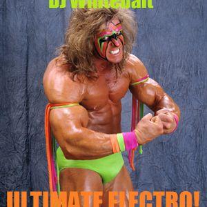 DJ Whitebait - ULTIMATE Electro Mix