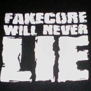 Sound Get Mashup: Fakecore!