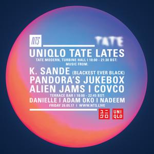 Uniqlo Tate Lates - Nadeem - 26th May 2017
