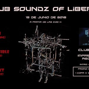 Djset at Liberty Private Club played the 16.06.2018 – MarioX-Q Projekt