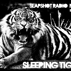 """Slapshot radio n°18 """"Sleeping tiger"""""""