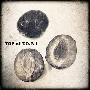 TOP of T.O.P. I