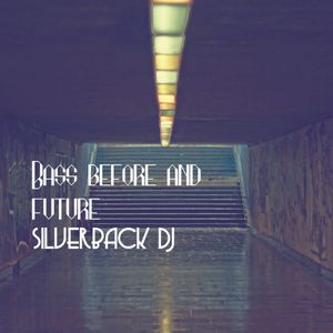bass before and future silverback dj