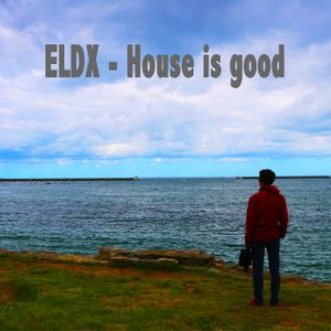 ELDX - House is good 20170227