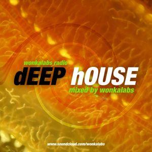 DEEP HOUSE - MIXED BY WONKALABS