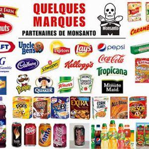 Pausa Cafe Leonardo Cohen /Guarani Kaiowá / Monsanto