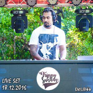 Delon - Trippy Sunday (Live Set 18.12.2016)