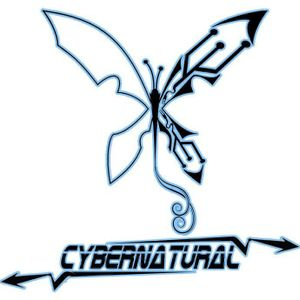 Electro Silver_CYBERNATURAL_DJ set live from CRVENI KRST (Psychedelic madness vol1)
