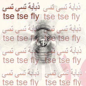 Tse Tse Fly - 5th March 2016