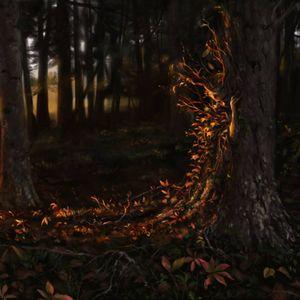 Dj Ange : Force Flowers (Code Vision Rec)  2016