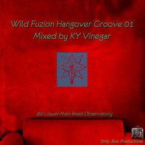 Wild Fuzion Hangover Groove Vol 01