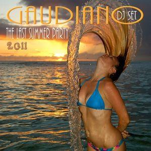 The Last Summer Party 2011 (DJ Set)