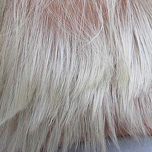 Grayed Hair Conqueror