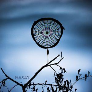 Alucine - Infinity Nets (Molecular Stage @ Pulsar Festival 2015)