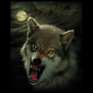 House Music mix #5 by Dj Wolf