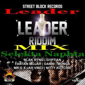 Leader-MIX Selekta Naphta