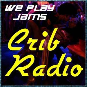 The Digital Visions 80's ElectroFunk Mix for Crib Radio (March 2017)
