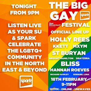 The Big Gay Festival with YourSU & Spark