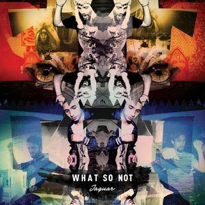 DNA RADIO 012  Feat.TRINO DJ - WHATS SO NOT