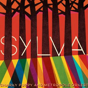Future Feature 25, 05-06-2015 > Snarky Puppy