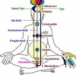 Oriente in Occidente>>>> Sahaja Yoga 13.03.2014