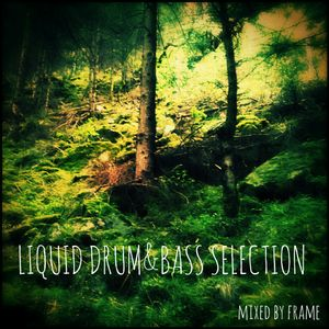 Liquid Drum & Bass  Selection mixed by frame
