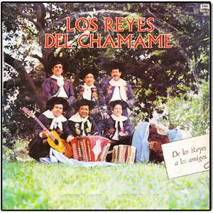 Los Reyes del Chamamé - De Los Reyes a Los Amigos