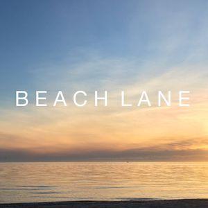 Live at 2017 Beach Lane Summer Festival