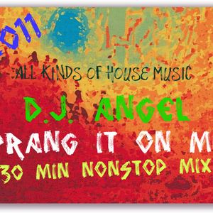 SPRANG IT MIX 2011, 30 MIN NONSTOP HOUSE MUSIC