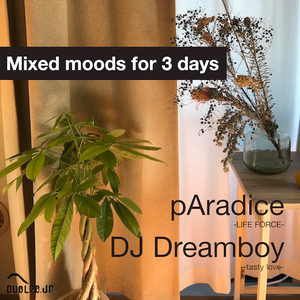 """dublab.jp Radio Collective #258 """"Mixed moods for 3 days"""" by pAradice, DJ Dreamboy (21.5.5)"""