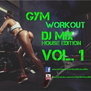 Gym Workout Mix - House Electro Dance Edition Vol.1