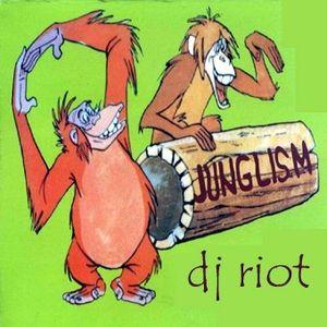 DJRiot - Junglism