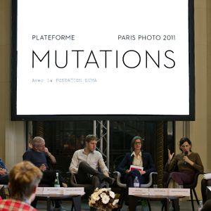 Platform 2011. Artist's views (13 nov. 2011) with Matt Collishaw and Bertien Van Manen